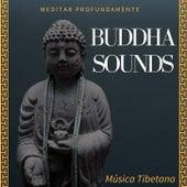 Buddha Sounds: Meditar Profundamente, Música Tibetana de Buddha Sounds