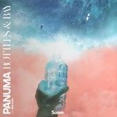 Bottles & Bay de Panuma