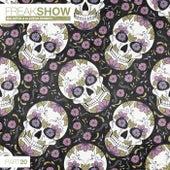 Freak Show, Vol. 20 - Big Room & Electro Session von Various Artists