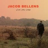 Sun Has Gone de Jacob Bellens