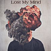 Lost My Mind by Vinny Sosa