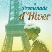 La promenade d'hivern by Various Artists
