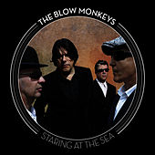 Staring At The Sea by The Blow Monkeys