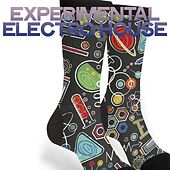 Experimental Electro House (Best Electro House Music Definition) by Various Artists