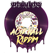 Acid Hall Riddim by Salaam Remi