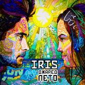 Джаред Лето by Iris