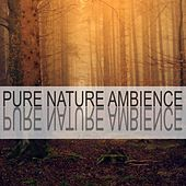 Pure Nature Ambience by Nature Sounds (1)