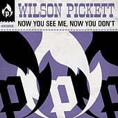 Now You See Me, Now You Don't by Wilson Pickett