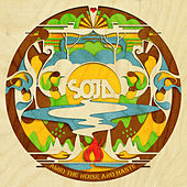 Amid the Noise and Haste de Soja