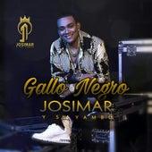 Gallo Negro von Josimar y su Yambú