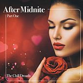 After Midnite, Pt. One von Various Artists