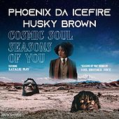 Cosmic Soul / Seasons of You by phoenix DA ICE FIRE