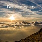 Dance monkay by Dance Monkey