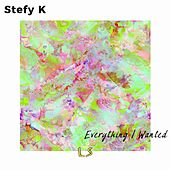 Everything I Wanted de Stefy K