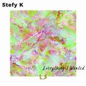 Everything I Wanted von Stefy K