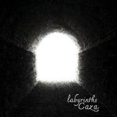 Labyrinths de Caza