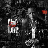 What's Real Love by Perk