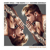 Too Good to Be True by Danny Avila