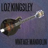 Vintage Mandolin by Loz Kingsley