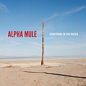Something in the Water by Alpha Mule