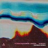 2 MUCH (Carbin Remix) von Flosstradamus