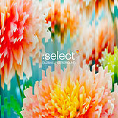 Global Underground: Select #5 (Mixed) de Various Artists