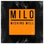 Wishing Well di Milo
