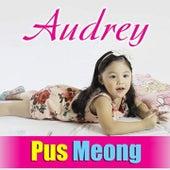 Puus Meooong de Audrey
