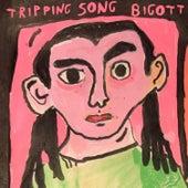 Tripping Song de Bigott