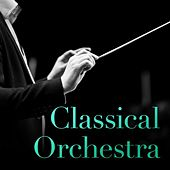 Classical Orchestra von Various Artists