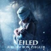 Veiled von Adrian von Ziegler