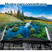 Musica para concentrarse: Música tranquila para estudiar, música para leer, concentración, enfoque, música de fondo y la mejor música de estudio, Sonidos de la naturaleza, Jardín Zen, Sonidos de agua de Musica para Concentrarse
