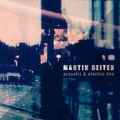 Acoustic & Electric Trio by Martin Reiter