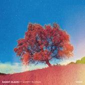 Oasis von Danny Olson