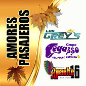 Amores Pasajeros von Grupo Pegasso Los Grey's