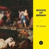 The Machine by Woods of Birnam