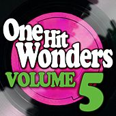 One Hit Wonders - Vol. 5 by Various Artists