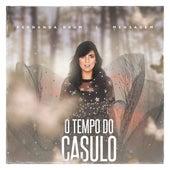 Mensagem: O Tempo do Casulo von Fernanda Brum