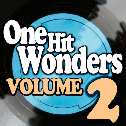 One Hit Wonders - Vol. 2 by Various Artists