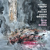 Skin and Bones by Matthew Shipp