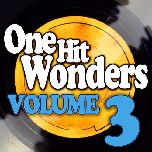 One Hit Wonders - Vol. 3 by Various Artists