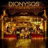 Voler en amour de Dionysos