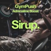 GymPush - Adrenaline Boost von Various Artists
