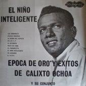 El niño inteligente von Calixto Ochoa