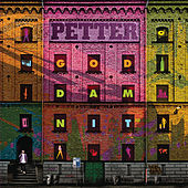 God Damn It (Bonus Version) von Petter
