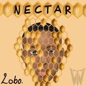 Nectar by Lobo