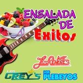 Ensalada De Exitos de Los Grey's Los Rehenes