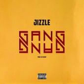 Gang Gang di Jizzle