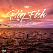 Big Fish de Ace Hood
