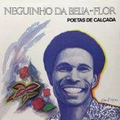 Poetas de Calçada de Neguinho da Beija-Flor